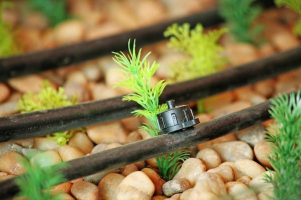 Best Times To Irrigate Your Garden Professional Plumbing